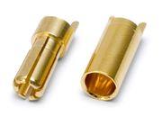 Kontakt Bullet 5.5mm Hona