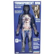Transparent Man*SALE