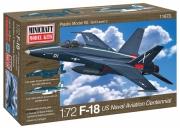 1/72 F-18 USN Centennial